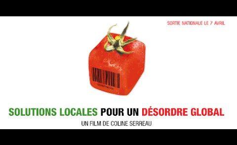 Solutions locales pour un désordre global 2010